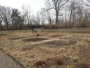 Bloomfield Garden Site