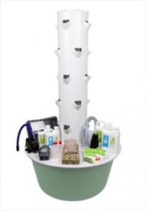 Tower Garden to be placed at Saint Johns