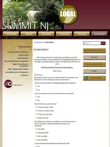 Survey on Summit, NJ website