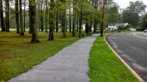 Lynn Park, Lincoln Park