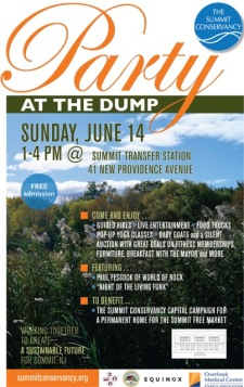 party at the Dump poster