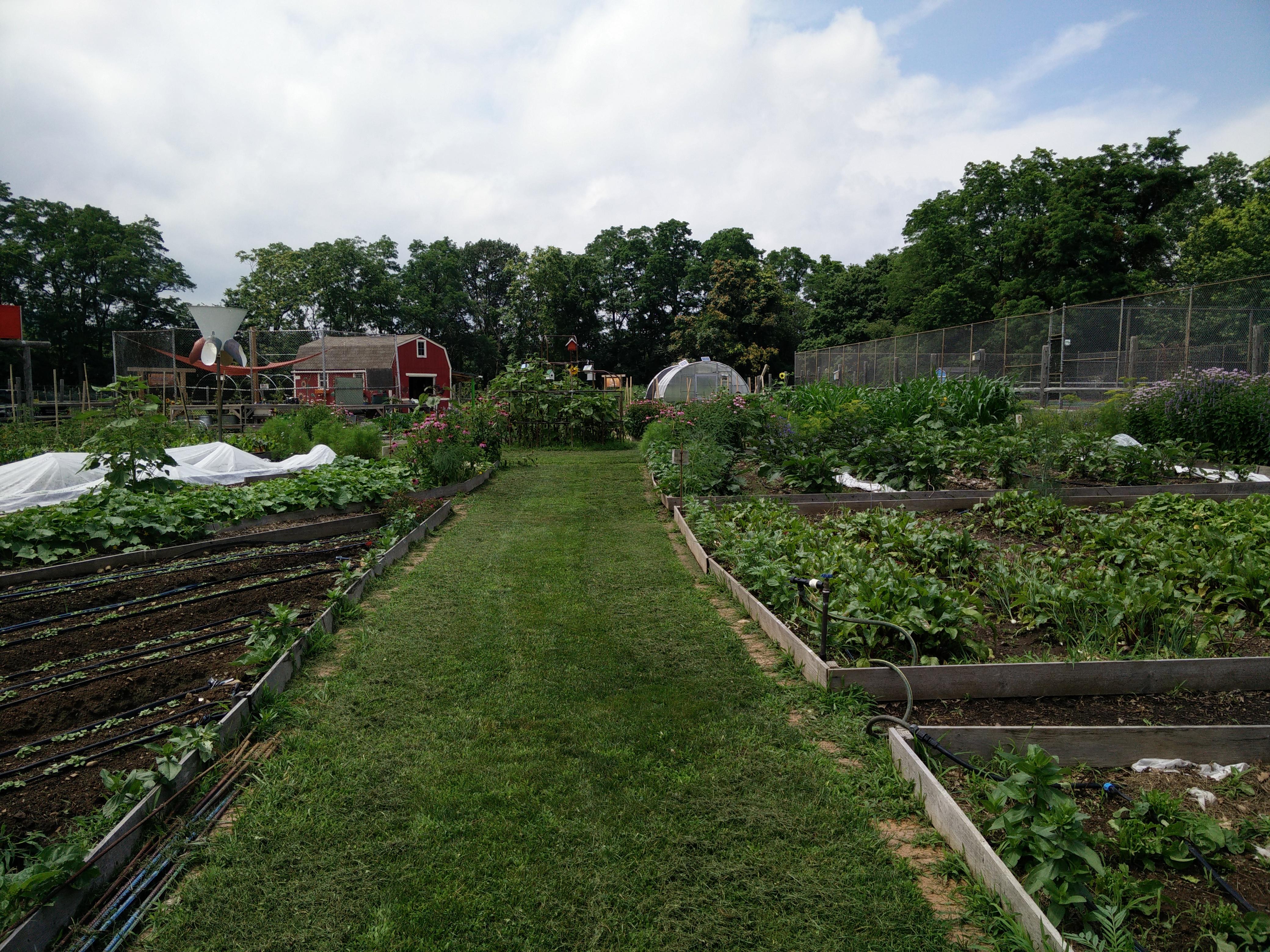 Urban Farm Shapingnj Community Pilots