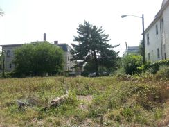 After-community garden 4