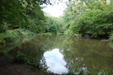 View of the Passaic River from the Summit trail, September 2015